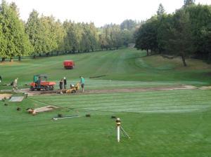 6 slit drainage on 18 green