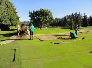 7 slit drainage on 12 green
